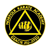 Norfolk Karate Academy/ Gracie Jiu Jitsu photo